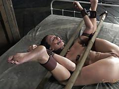 All you can do is fuck my holes