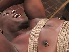 femdom, bdsm, strapon, interracial, natural tits, tied up, anal insertion, brunette milf, bondage device, bastonnade, bobbi starr, jack hammerx, men in pain, kinky dollars