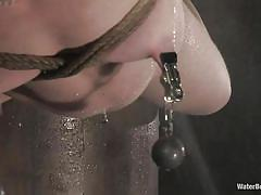 small tits, milf, bdsm, hanging, redhead, piercing, ball gag, weight on tits, cold water, water bondage, shibari, madison young, water bondage, kinky dollars