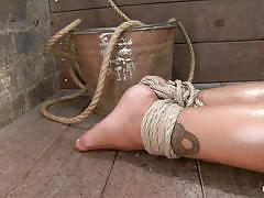 bondage, bdsm, hanging, oiled, tattooed, tied up, brunette milf, ropes, ball gag, stick with dildo, shibari, skin diamond, hogtied, kinky dollars