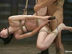 bdsm, hanging, blowjob, vibrator, tied up, brunette milf, anal plug, ropes, chain collar, shibari, derrick pierce, coral aorta, the training of o, kinky dollars