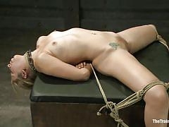 bondage, bdsm, vibrator, blindfolded, tied up, blonde milf, spread legs, ropes, ball gag, chain collar, rodeo sex machine, chastity lynn, the training of o, kinky dollars