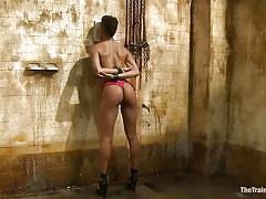 small tits, milf, bdsm, ebony, round ass, brunette, tied up, scissors, mouth gagged, sink, shibari, nikki darling, the training of o, kinky dollars