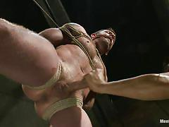 handjob, hanging, gay bdsm, tied up, basement, muscled gay, ropes, executor, ball gag, shibari, will jasper, morgan black, men on edge, kinky dollars
