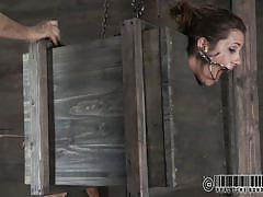 milf, bdsm, big ass, screaming, black hair, mouth opened, bondage device, stick with dildo, box, real time, cici rhodes, real time bondage, kinkster cash