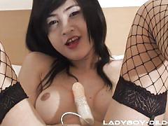 thai, shemale, masturbation, ladyboy, anal insertion, sex toy, shemale big boobs, fishnet stockings, ladyboy dildo, ladyboy gold, yee