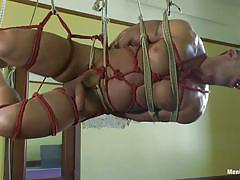 Tied up gay hanging and getting fucked in the anus