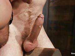 Gay executor having fun with cody