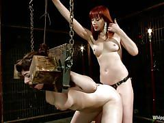 milf, tattoo, bdsm, redhead, whipping, strap on, lesbian domination, short hair, brunette, from behind, bondage device, ball gag, annika, maitresse madeline, whipped ass, kinky dollars