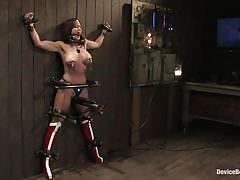 Tied up and tortured