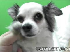 Puta locura amateur teen spanish bukkake