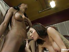 Black shemale and her luscious milf