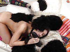small tits, teen, round ass, russian, costume, huge dildo, brunette, from behind, black hair, panda, olga x, panda fuck, wtf bucks