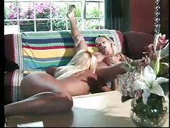 Large breasted blonde having fun