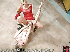 blonde, bondage, dominatrix, femdom, slave, slaveboy, domination, submission, bdsm, sadism, masochism, bound, strap-on, flogging, whipping, milfmom, mother