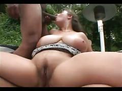anal, bbw, big boobs, group sex, milfs
