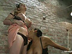 Tied and dominated, she obeys the shemale