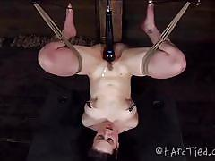 milf, bdsm, domination, vibrator, brunette, moaning, tied up, upside down, ropes, clamps, drill, dixon mason, hard tied, kinkster cash