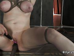 milf, tattoo, bondage, bdsm, brunette, tied up, tits torture, ropes, executor, mouth gagged, stick with dildo, juliette march, hard tied, kinkster cash