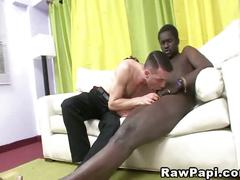 Big black horny cock and tight ass latin gay.