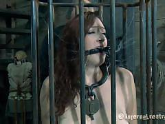 milf, bondage, bdsm, big boobs, older man, brunette, pale, cage, sucking dildo, mouth gagged, restraints, holly wildes, infernal restraints, kinkster cash