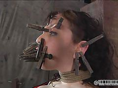 milf, bdsm, torture, mistress, stockings, brunette, tied up, ropes, clothespins, nose piercing, real time, dixon mason, real time bondage, kinkster cash