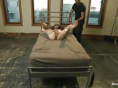 Legs spread and ass fucked