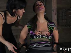 milf, bdsm, mistress, vibrator, brunette, tied up, ropes, clamps, duct tape, restraints, zayda j, hard tied, kinkster cash
