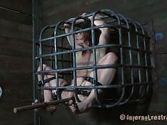 milf, bdsm, shackles, bondage cage, brown haired, stick with dildo, restraints, cici rhodes, infernal restraints, kinkster cash