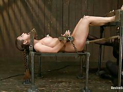 milf, bdsm, lesbian domination, brunette, bondage device, vault, shackles, stick with dildo, restraints, device bondage, kink, mz berlin, serena blair, mz berlin, serena blair, device bondage, kinky dollars