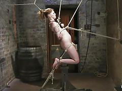 small tits, milf, bondage, bdsm, hanging, nylon, redhead, whipping, punishment, tied up, ropes, lash, suffocation, vault, executor, squeezed tits, weight on tits, clamps on nipples, marie mccray, hogtied