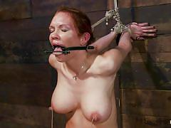 milf, tattoo, bondage, bdsm, big tits, punishment, domination, blowjob, vibrator, brunette, moaning, tied up, tits torture, sex toy, perfect boobs, ropes, vault, gag, suckers, tied nipples