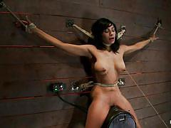 milf, bondage, bdsm, big tits, tied, vibrator, brunette, moaning, ropes, laundry pliers, vault, executor, beretta james, hogtied, kinky dollars