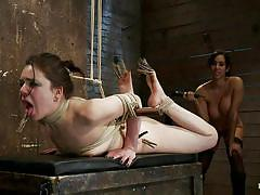 milf, bondage, bdsm, punish, whipping, big boobs, lesbian fisting, vibrator, screaming, tied up, nice ass, brunettes, ropes, laundry pliers, vault, isis love, juliette march, hogtied, kinky dollars