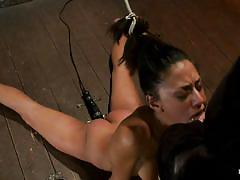 Big hard cock in tied brunette mouth