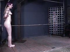 blonde, bdsm, torture, cage, natural tits, executor, rope bondage, dyed hair, real time bondage, sierra cirque