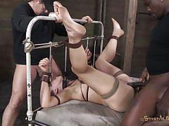bdsm, babe, deepthroat, brunette, tied up, tits torture, ropes, tied on bed, shibari, mouth fucking, sexually broken, audrey rose, matt williams, audrey rose, matt williams, sexually broken, kinkster cash