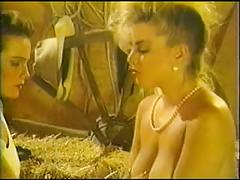 Hhhot tv 2 (1991)