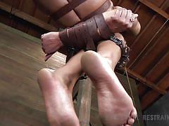 bdsm, hanging, interracial, vibrator, big booty, tied up, ebony milf, executor, leather belts, mouth gagged, stick with dildo, muzzle, infernal restraints, nikki darling, nikki darling, infernal restraints, kinkster cash