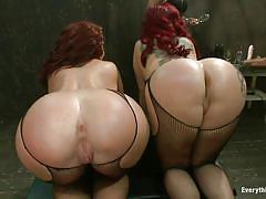 Big asses - big fun!