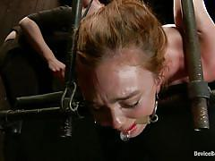 bdsm, mistress, lesbian domination, gloves, anal insertion, pussy fingering, ball gag, metal hook, restraints, device bondage, kink, mz berlin, jodi taylor, keara black, mz berlin, jodi taylor, keara black, device bondage, kinky dollars