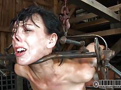 small tits, milf, bdsm, dildo, screaming, brunette, ass spanking, electric wand, device bondage, restraints, real time, metal frame, real time bondage, elise graves, elise graves, real time bondage, kinkster cash