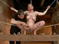 blonde, vibrator, pussy torture, executor, ball gagged, metal clamps, nipple torture, hogtied, kink, darling