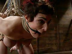 femdom, bdsm, babe, hanging, redhead, mistress, big butt, vibrator, tied up, pink pussy, hogtied, kink, annika xx, annika xx, hogtied, kinky dollars
