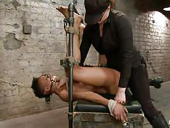 bdsm, interracial, mistress, vibrator, ebony milf, black hair, clamps, bondage device, restraints, muzzle, hogtied, kink, nikki darling, nikki darling, hogtied, kinky dollars