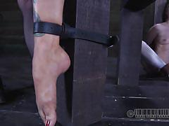 milf, bdsm, mistress, big boobs, needle, vault, executor, mouth gagged, muzzle, wires, fingers torture, real time bondage, alani pi, rain degrey, alani pi, rain degrey, real time bondage, kinkster cash