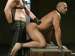 anal, bdsm, blowjob, gays, from behind, sex slave, collar, leather pants, vault, bound gods, kink men, hayden richards, leo forte, van darkholme, hayden richards, leo forte, van darkholme, bound gods, kinky dollars
