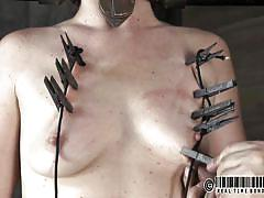 small tits, milf, bdsm, vibrator, brunette, cage, clothespins, restraints, real time, real time bondage, cici rhodes, cici rhodes, real time bondage, kinkster cash