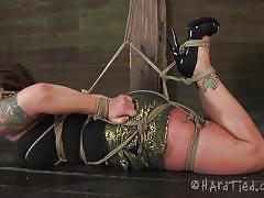 milf, bdsm, big ass, big boobs, blindfolded, brunette, tattooed, tied up, ropes, shibari, pumps, wooden box, hard tied, claire dames, claire dames, hard tied, kinkster cash