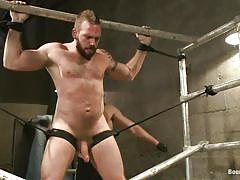 tattoo, bdsm, hanging, whipping, blowjob, gays, tied up, gay bear, upside down, ropes, bound gods, kink men, connor maguire, johnny parker, connor maguire, johnny parker, bound gods, kinky dollars